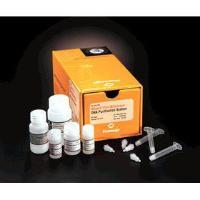 Wizard Plus Minipreps DNA Purification System, 50 preps