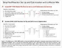 Simple Master Mix-based Reaction Setup