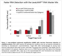 Faster Detection of MS2 Bacteriophage RNA