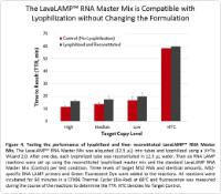 LavaLAMP RNA Master Mix is Compatible with Lyophilization