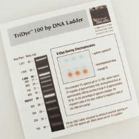 TriDye 100 bp DNA Ladder - 125 gel lanes
