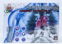 Human Body Adventure Kit