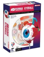 Eyeball Model