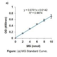 Methylglyoxal Assay Kit (Colorimetric)