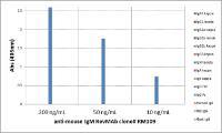 Rabbit Anti-Mouse IgM Monoclonal Antibody (Biotin)