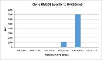 RM208 specifically reacts to Histone H4 trimethylated at Lysine 20 (K20me3). Monomethylated Lysine 20 (K20me1), or other methylations in Histone H4.