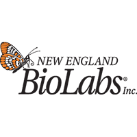 New England Biolabs